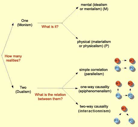 the mind body problem a reaction paper philosophy essay Solutions to the mind/body problem usually try to  one reaction is to think of the inputs and outputs of a  a companion to philosophy of mind.